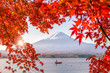 Leinwanddruck Bild - Colorful autumn season and Mountain Fuji