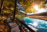 Paysage d'automne dans les Vosges alsace lac de Lispach - 219414344