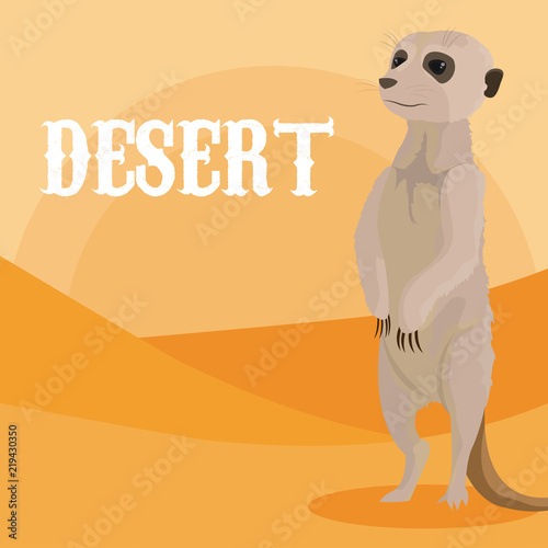 Desert animal cartoon - 219430350