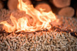 Wooden Biomass in fire