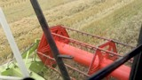 close view of a reaping harvester in detailed action - 219527329