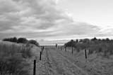 Sanddüne an der Ostsee in Warnemünde