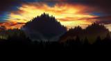 Forest landscape at sunset