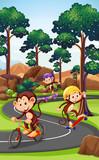Monkey playing extreme sport - 219636188