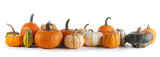 Many Pumpkins on white background - 219640109