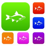 River fish set icon in different colors isolated vector illustration. Premium collection
