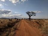 Fototapeta Nature - Kenya Tsavo East © ziena