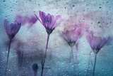 Grunge textured pink red colored flowers with rain droplets background.  - 219708132