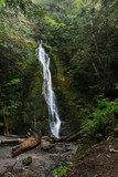 Madison Falls in Olympic National Park, WA