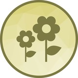 Flowers, garden, spring