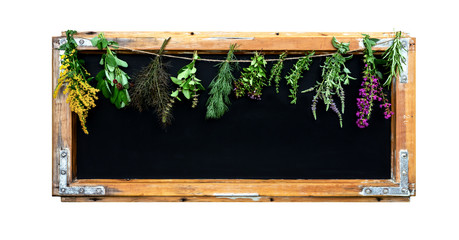 Black chalkboard with herbs.