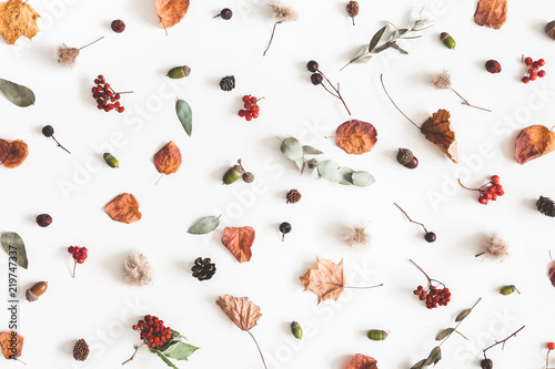 Autumn composition. Pattern made of eucalyptus branches, rose flowers, dried leaves on white background. Autumn, fall concept. Flat lay, top view - 219747337