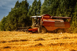 harvester on the field during harvesting. The month of August - 219765164