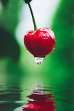 Red cherry with water dropping into a pool