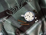 Cup of tea cinnamon and marshmallow on the green plaid