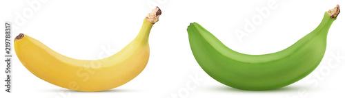 Yellow and green bananas - 219788317