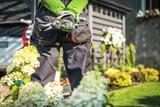 Backyard Garden Work - 219834351