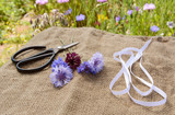 Ribbon and scissors with freshly cut cornflowers on hessian