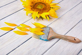 Fresh sunflower close up