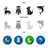 Donkey, owl, kangaroo, shark.Animal set collection icons in black, flat, monochrome style vector symbol stock illustration web.