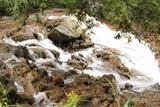チャツボミゴケ公園の川