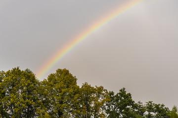 Rainbow in the sky. © lapis2380