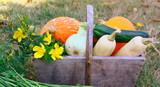 panier de légumes d'automne - 219979713