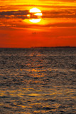 Sunshine over the Sandy Hook Bay in New Jersey  - 219991175
