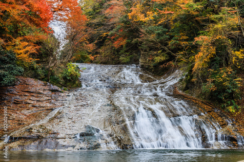 秋の養老渓谷の粟又の滝の風景