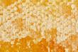 Leinwanddruck Bild - full frame of beeswax with honey as background
