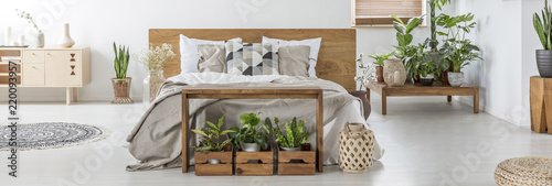 Leinwanddruck Bild Many fresh plants in real photo of bright bedroom interior with king-size bed with grey bedding