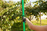 Boy hand painting a pole with green color - 220122350