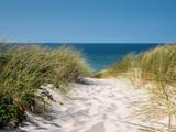 idyllischer Weg ans Meer - 220137358