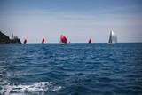 Colorful sailboats in Piran, Slovenia - 220143995