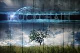 Single tree on imaginative meadow landscape and futuristic Blockchain cyberspace background. - 220148574