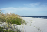 Florida Panhandle Pristine Beach with Sea Oats - 220151135