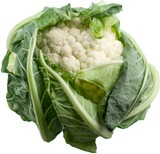 Cauliflower head - 220169158