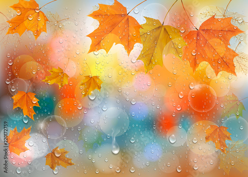 Autumn colorful background with  leaves and raindrops on the window. Vector background. Vector
