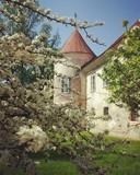 Old Beltinci castle in spring - 220198766