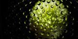 Spiegelung Wassertropfen Blume - 220263548