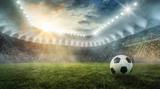 Ball liegt im Fußballstadion auf dem Rasen - 220287560