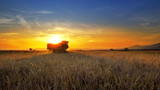 Combine, field and sunrise. Reach success in agribusiness - 220293980