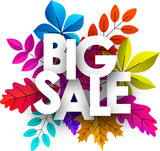 Big sale sign. Promo poster with color leaves for shop. - 220300577