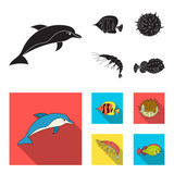 Shrimp, fish, hedgehog and other species.Sea animals set collection icons in black,flat style vector symbol stock illustration web. - 220344502