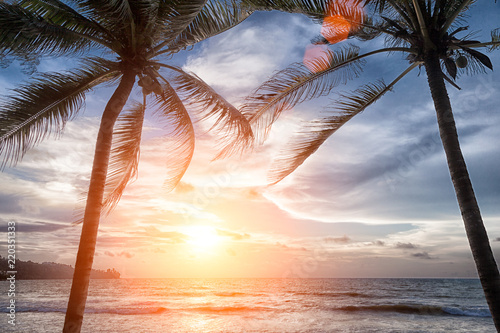 sunset on the beach - 220351333