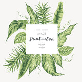 Vector template card of green tropical leaves - 220363316