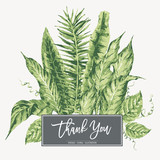 Vector template card of green tropical leaves - 220363533