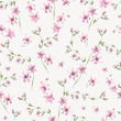 Vector vintage floral seamless pattern with pink wildflowers. - 220371178