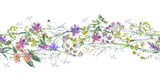 Watercolor summer wildflowers seamless border Botanical colorful illustration - 220380763