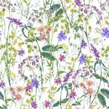 Watercolor summer wildflowers seamless pattern - 220380931